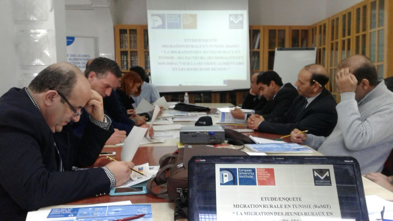 Survey workshop in Tunis, 15 December 2016